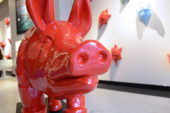 red pig in gallery