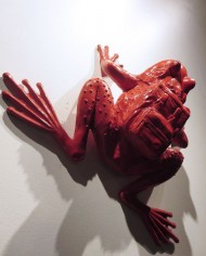 red frog on wall