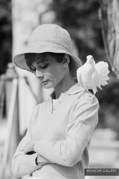 Audrey-with-dove
