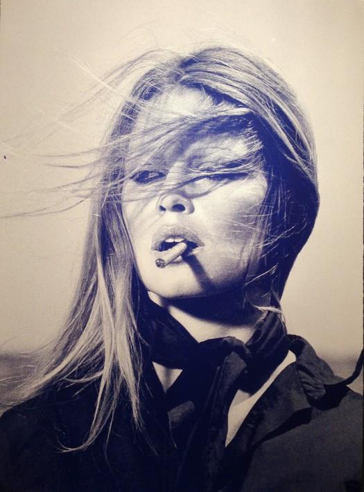 Brigette Bardot Terry O'neill