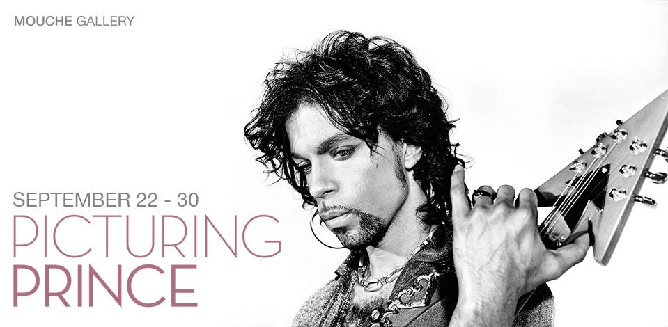 Prince-Banner-web