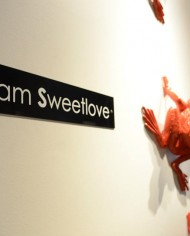 sweetlove frog wall