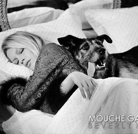 Brigitte-Bardot-W-dog-WM