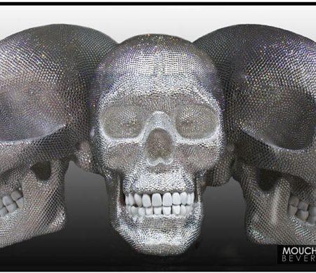 VeronaTriSkull