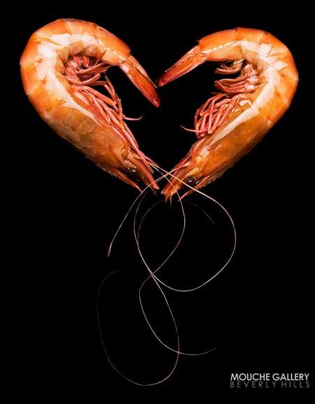 seafood-in-love-prawns
