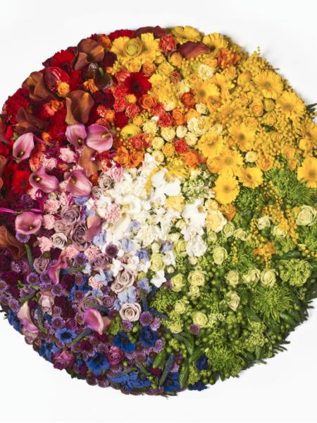 Colour Pixel