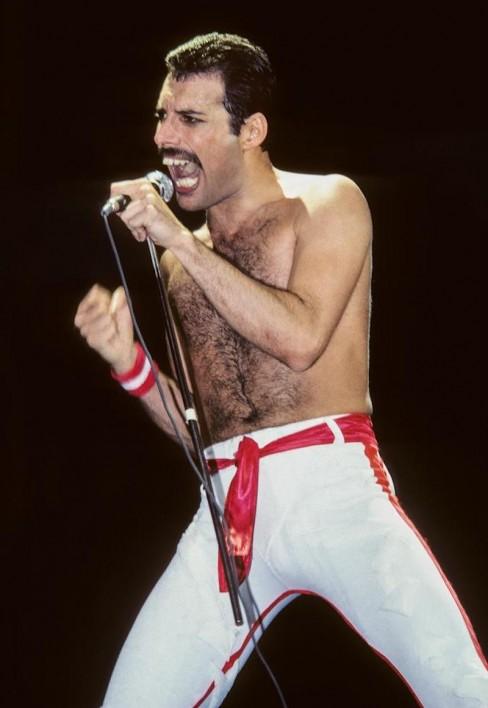 Freddie Mercury, 1982 by Lynn Goldsmith
